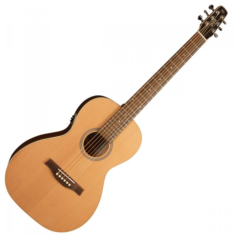 guitare acoustique quebecoise