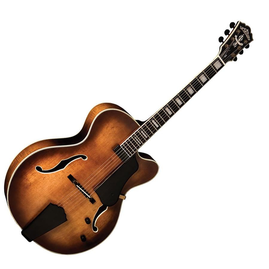 guitare acoustique washburn avis