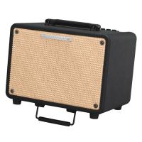 Photo IBANEZ T30 - COMBO ACOUSTIQUE 30W