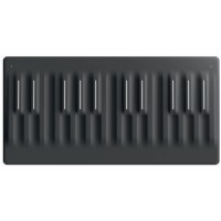 Photo ROLI SEABOARD BLOCK