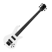 Photo SPECTOR PERFORMER 5 WHITE